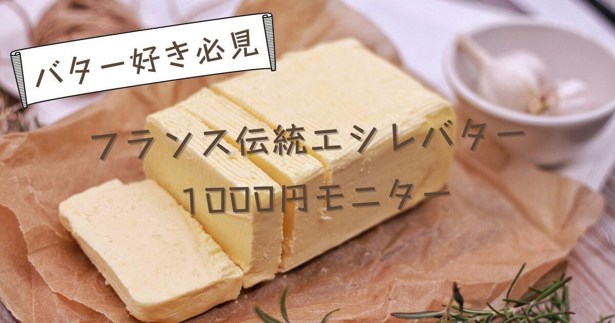エシレバター1000円モニターを紹介